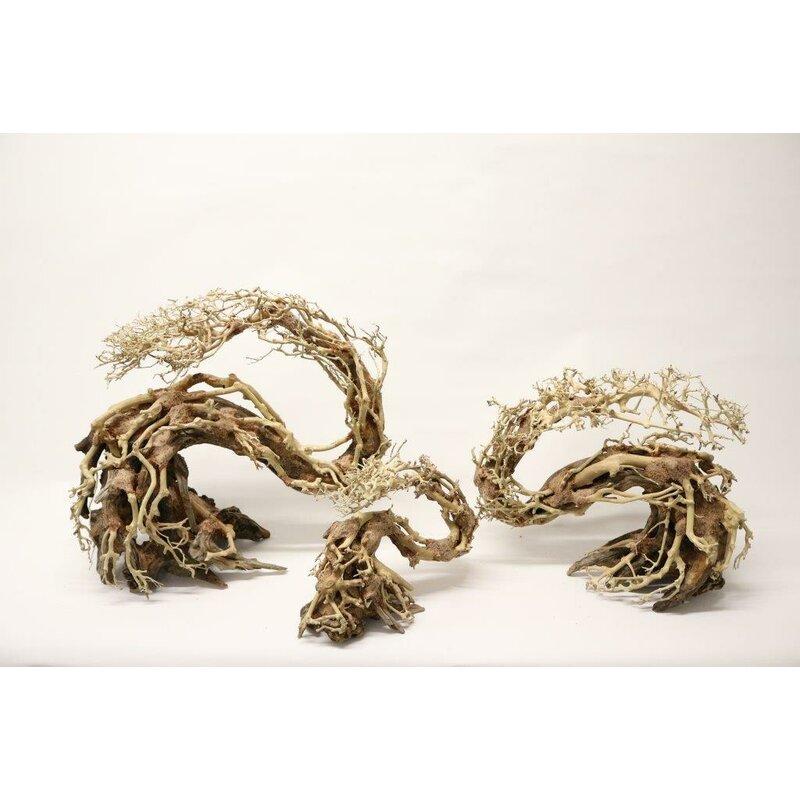 Aquarium Scaper Deko Drachen Bonsai S L Favopet Das Beste Fur I 39 99